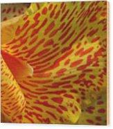 Wild Petals Wood Print by Jeannie Burleson