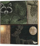 Wild Racoon And Deer Patchwork Wood Print