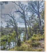 River Bush Track Wood Print