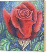 Wild Rose One Wood Print