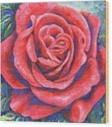 Wild Rose Three Wood Print