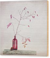 Wild Rosehips In A Bottle Wood Print