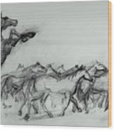 Wild Stallion And Mustangs Wood Print