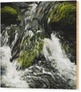 Wild Stream Of Green Moss Wood Print