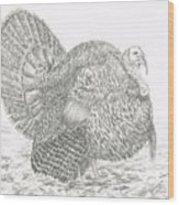 Wild Tom Turkey Wood Print