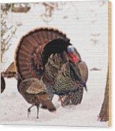 Wild Turkey Parade Print Wood Print