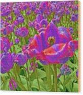 Wild Version Pink And Purple Tulips Wood Print