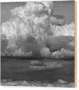 Wild Weather Wood Print