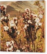 Wild West Mountain View Wood Print