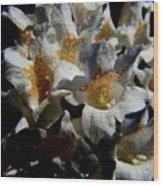 Wild White Wood Print