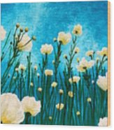Poppies In The Blue Sky Wood Print