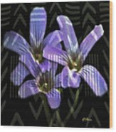 Wild Wildflowers Wood Print