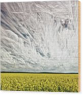 Wild Winds Wood Print by Matt Molloy