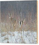 Wild Winter Wood Print