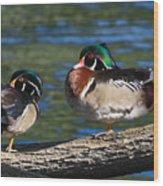 Wild Wood Ducks On A Log Wood Print