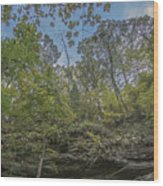 Wildcat Den Cliffs And Trees In Fall Wood Print