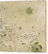 Wildebeest Disperse Over The Serengeti Wood Print