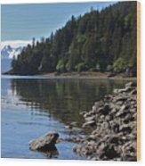 Wilderness Cove Wood Print