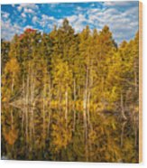Wilderness Pond 3 Wood Print