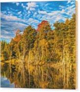 Wilderness Pond - Paint Wood Print