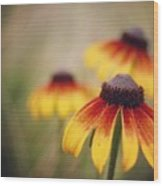 Wildfire Wildflowers  Wood Print