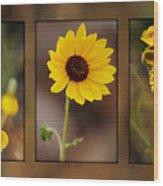 Wildflower 3 Wood Print by Jill Reger