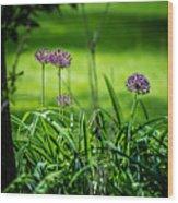 Wildflower Bloom Wood Print