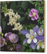 Wildflower Collage Wood Print