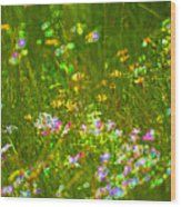 Wildflower Field Wood Print