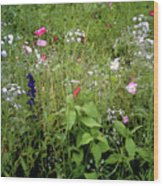 Wildflower Garden Wood Print