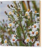 Wildflower,  Wood Print
