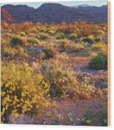 Wildflower Meadow At Joshua Tree National Park Wood Print