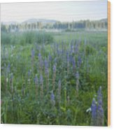 Wildflower Meadow Wood Print