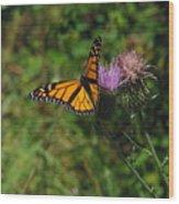 Wildflower Monarch Wood Print