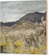 Wildflower Mountain Wood Print by Andrea Hazel Ihlefeld