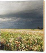 Wildflower Panorama 2008 Wood Print