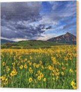 Wildflower Storm Wood Print