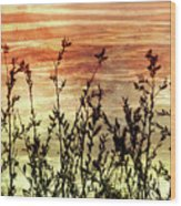Wildflower Sunrise Wood Print