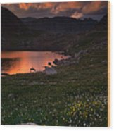 Wildflower Sunset At Summit Lake Wood Print