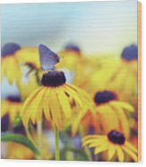 Wildflower Visitor Wood Print