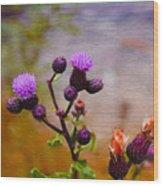 Wildflower Watercolour Wood Print