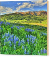 Wildflower Wonder Wood Print