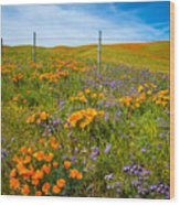 Wildflower Wonders Of The High Desert Wood Print