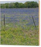 Wildflowers - Blue Horizon Wood Print