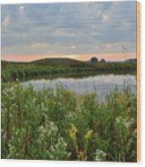 Wildflowers Along Nippersink Creek In Hackmatack Nwr Wood Print