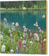 Wildflowers Along The Lake Wood Print