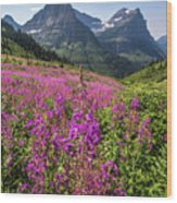 Wildflowers And A Glacier Wood Print