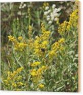 Wildflowers And Bee Wood Print
