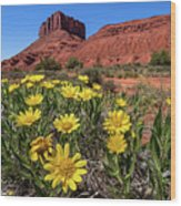 Wildflowers And Butte Wood Print