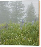 Wildflowers And Fog Wood Print